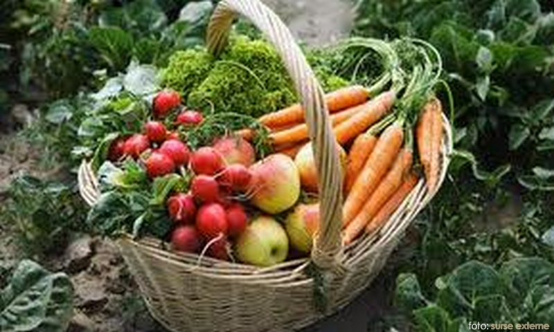 agricultua-ecologica