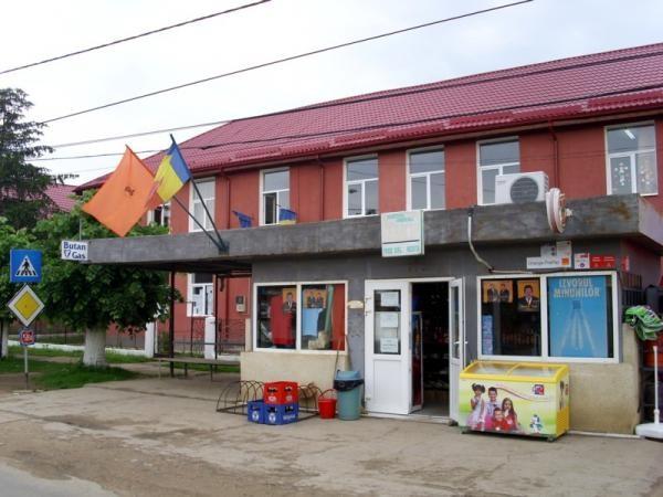 scoala_din_farliug