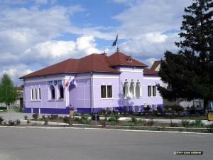 Primaria Otelu Rosu