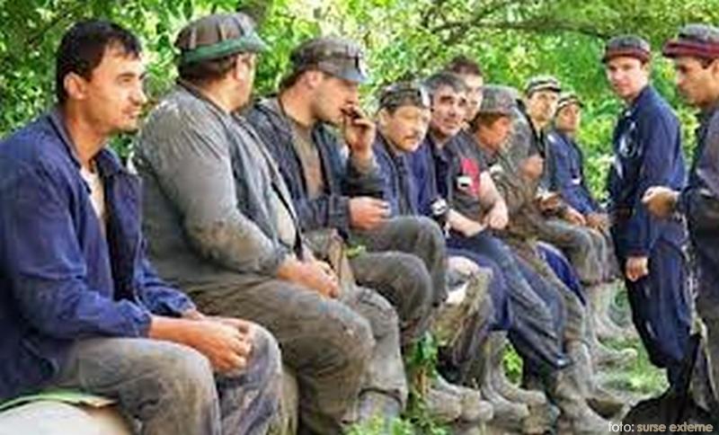 mineri-acasa