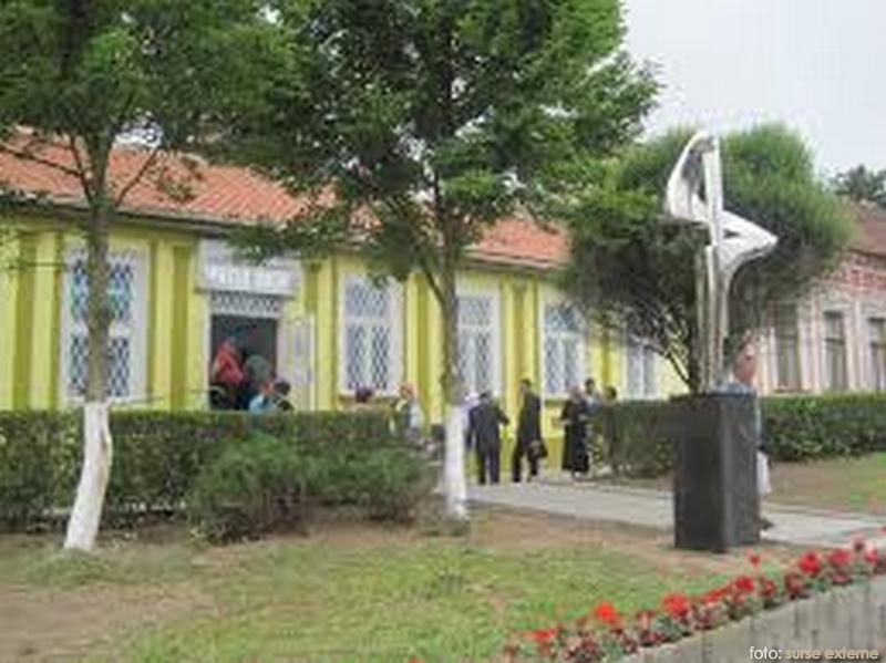muzeu-bocsa