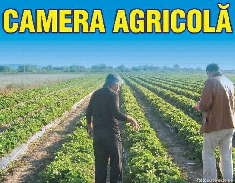 CAMERA AGRICOLA