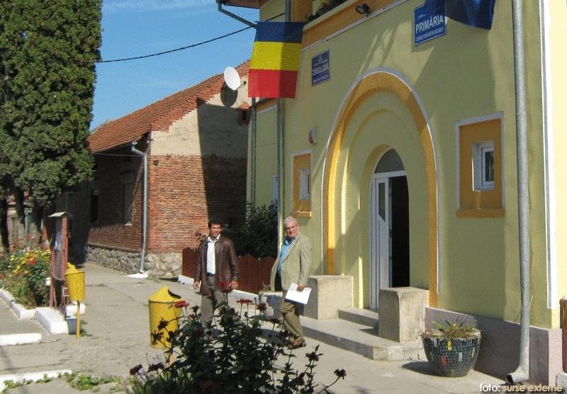 primarie Daicoviciu