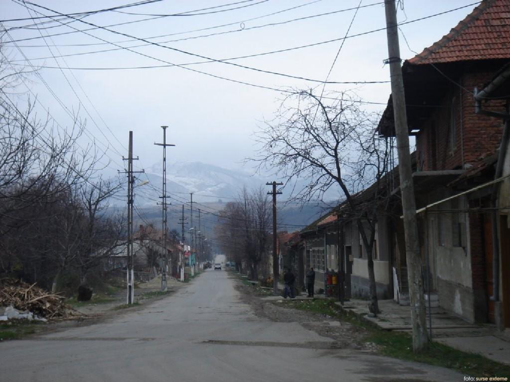 Slatina Timis