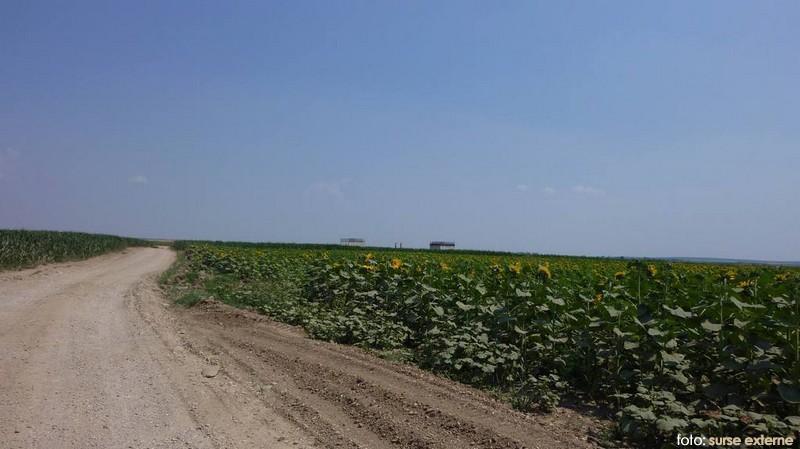 drum agricol