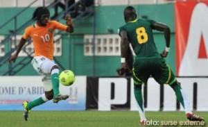 Camerunul este a 24-a selectionata calificata la CM 2014