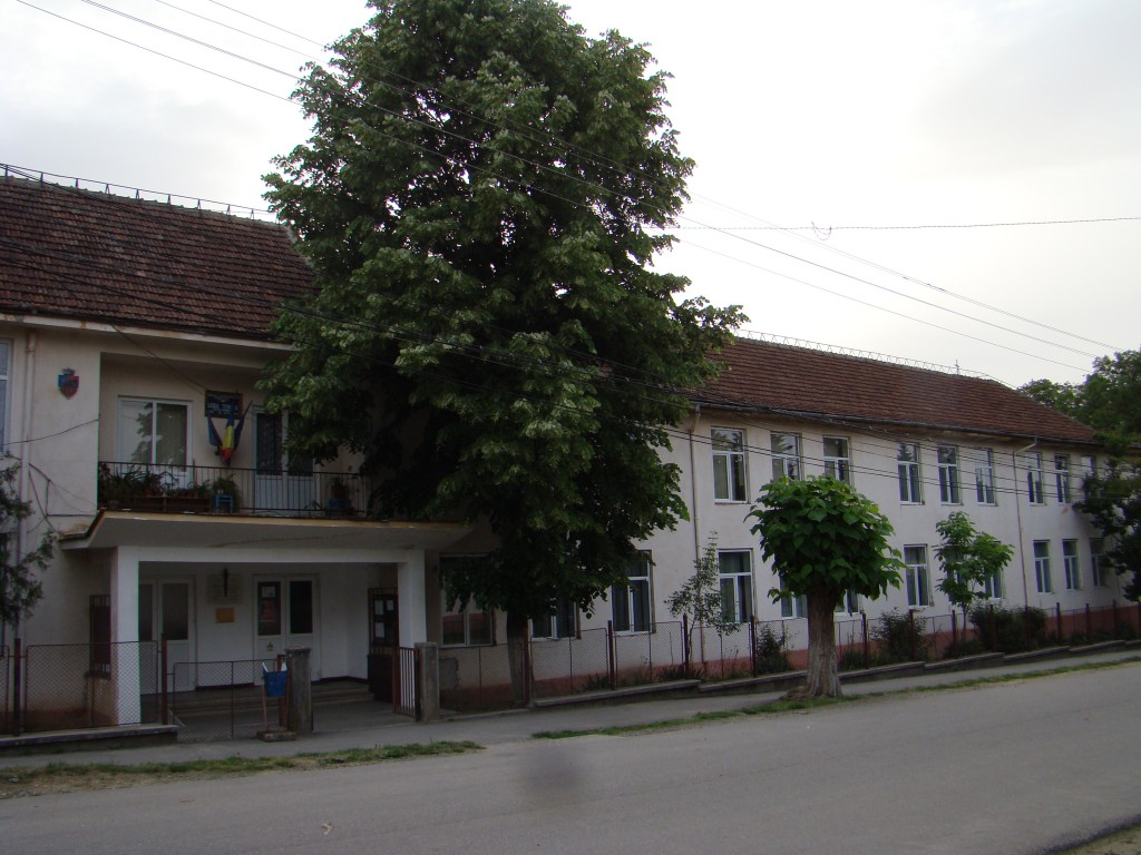 Liceul Tata Oancea