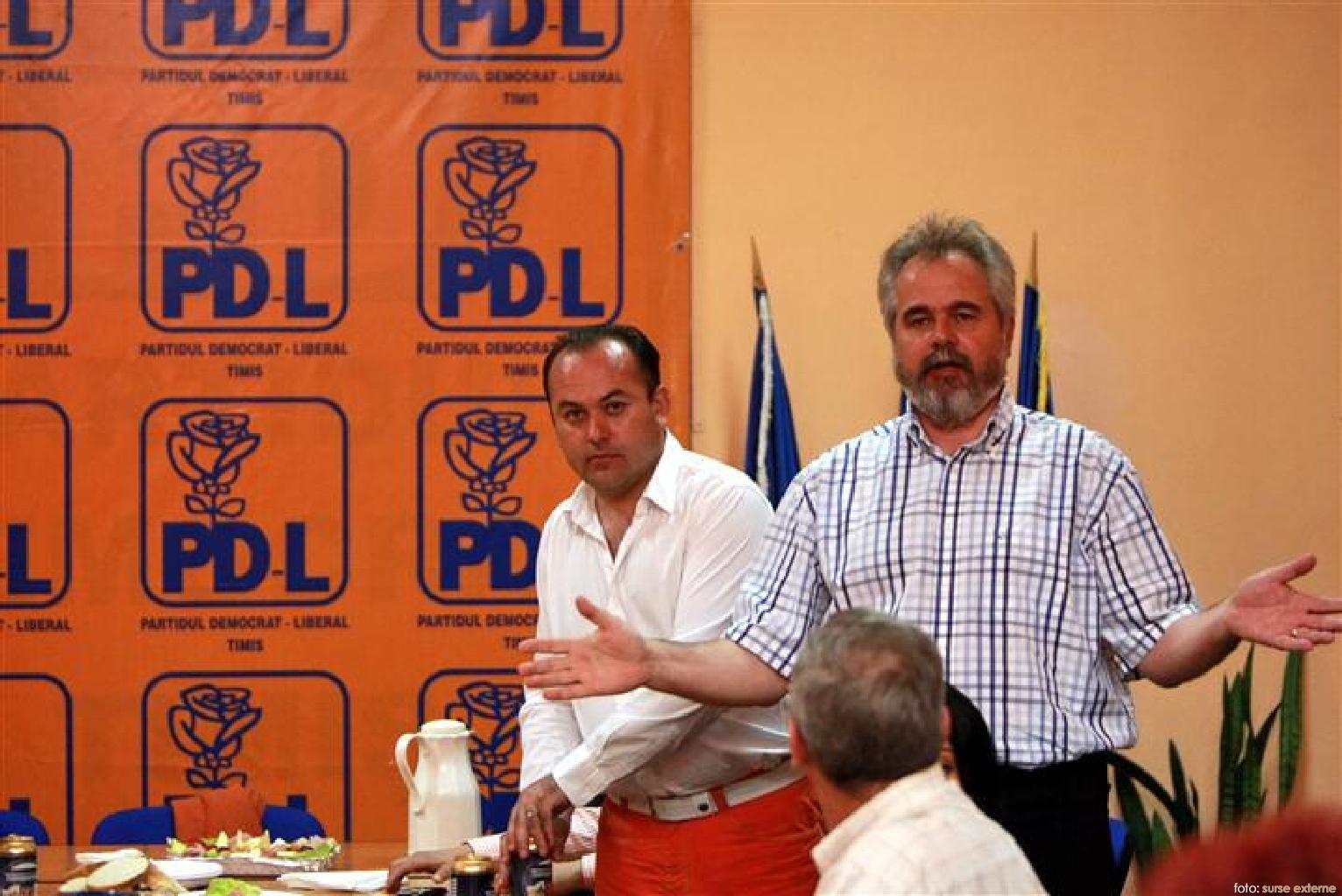 PDL timis