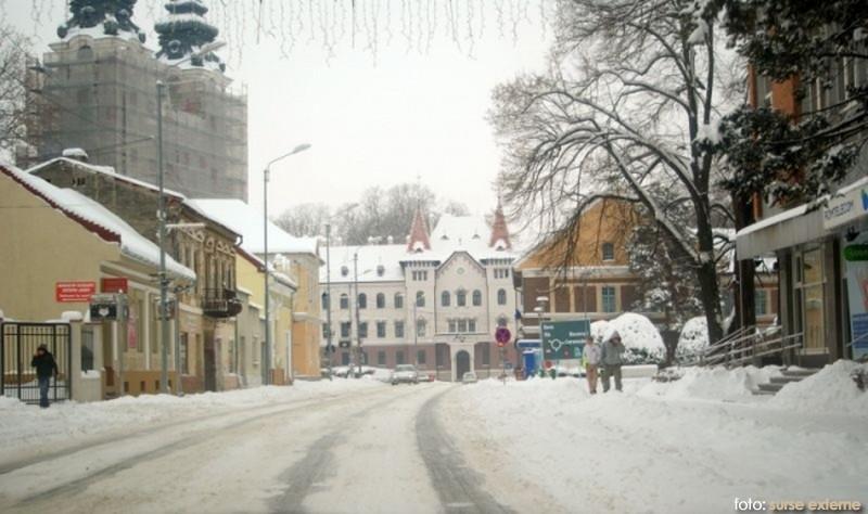 iarna lugoj