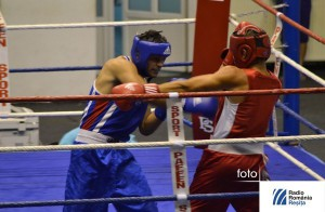 Bibiricea in ring