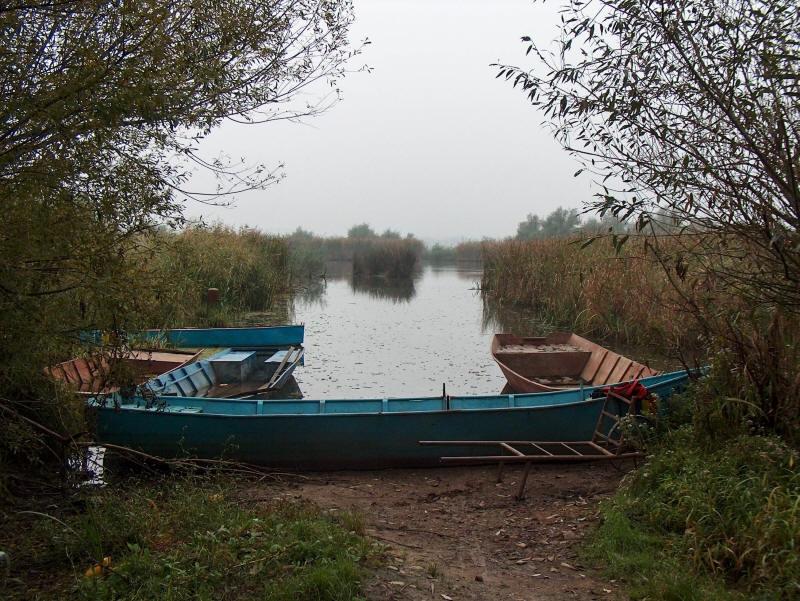Ostrovului Moldova Veche