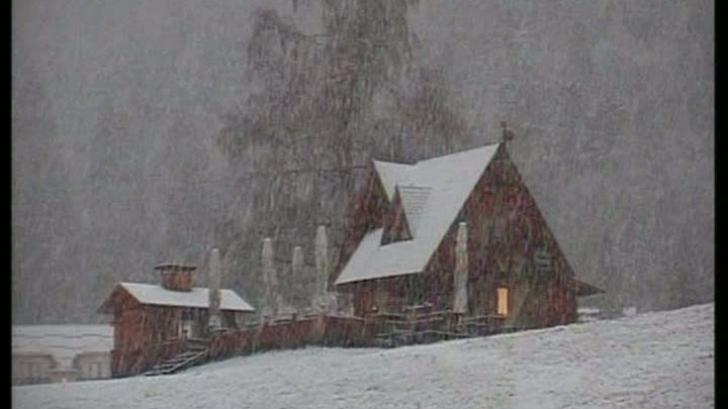 ninsoare munte