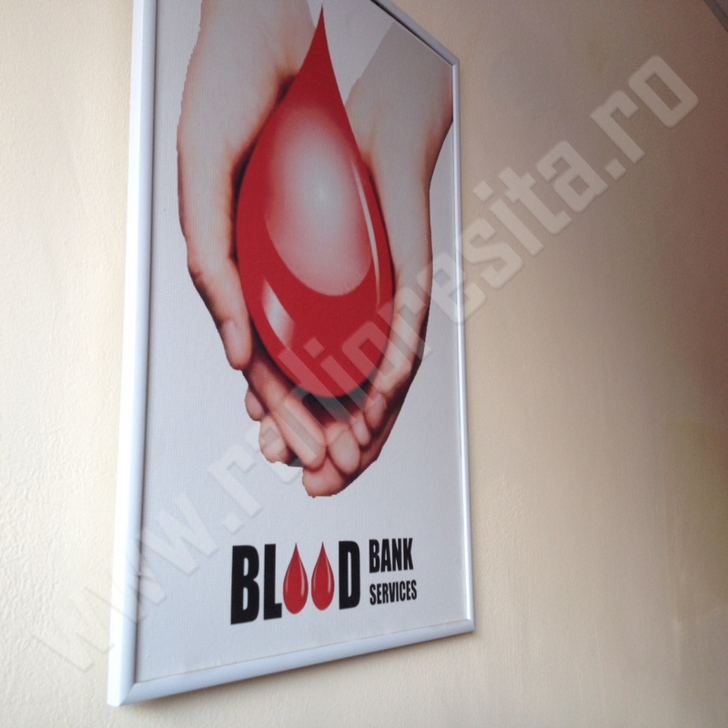 donare sange 14