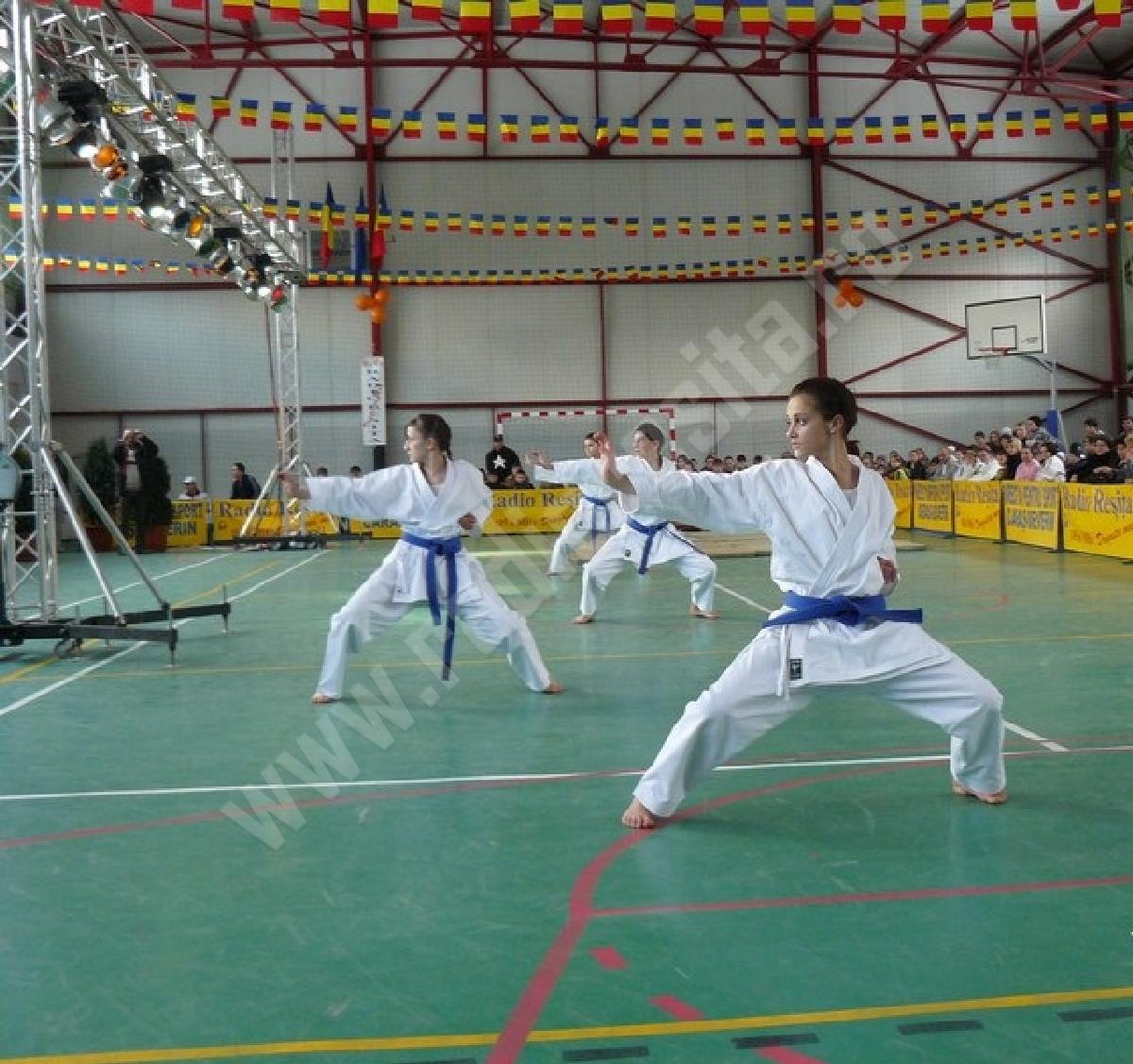 karateka Sport Star Anina
