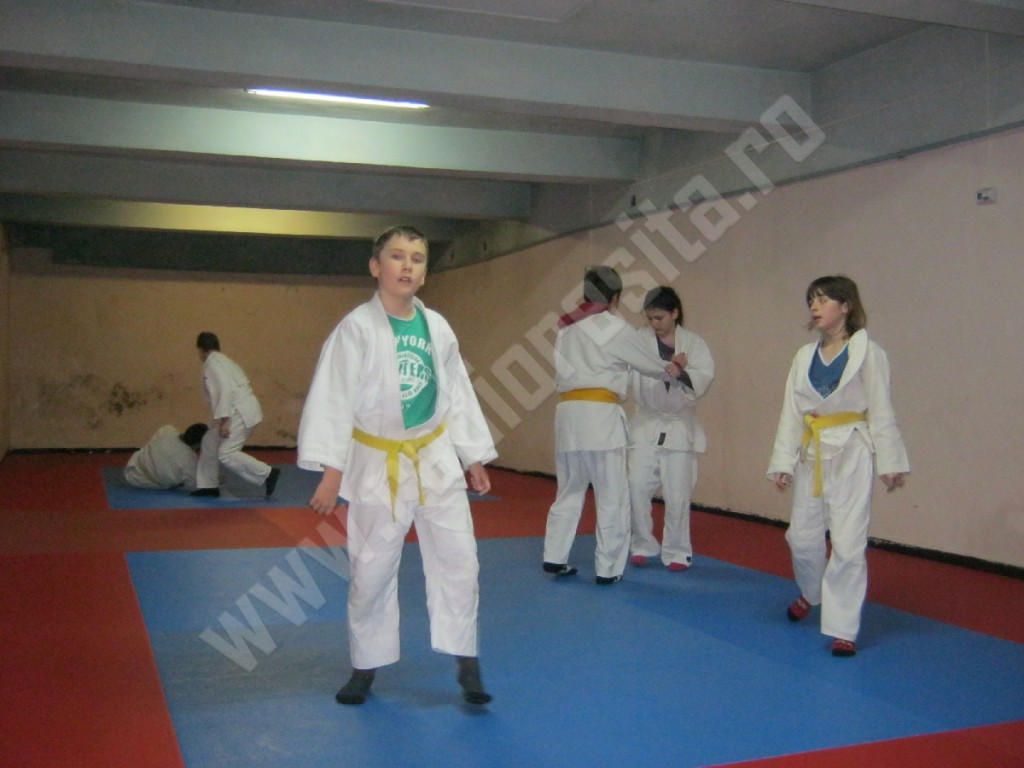 judo Muncitorul Resita (2)
