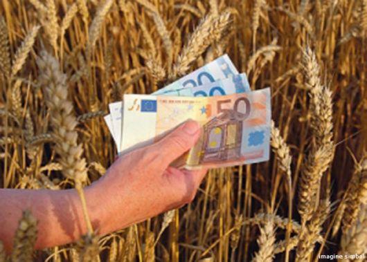 big-mai-multe-subventii-pentru-agricultura