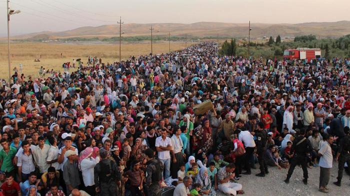 refugiaţi_m(4)