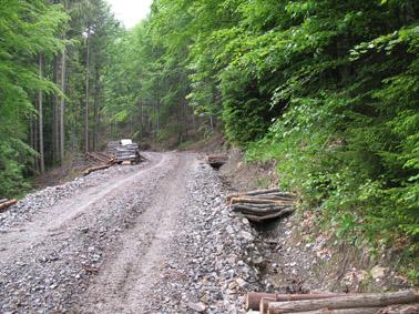 Intretinerea-drumurilor-forestiere